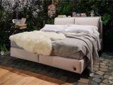 Ada Betten Preise Bett Birkenstock