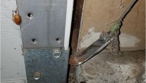 Adm Garage Doors Folsom Ca Adm Garage Doors Inc Of Folsom Ca 916 595 5355