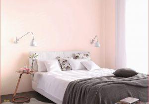 Besten Farben Fürs Schlafzimmer Dekorative Pflanzen Zum Verschenken – Wohnzimmer Frisch