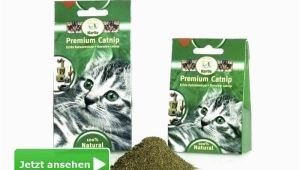 Bestes Mittel Gegen Katzen Im Garten Spray Gegen Katzen Anti Test Mittel Katzenkot Im Garten