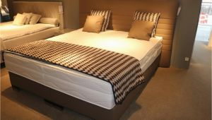 Bugatti Betten Bett Prodomo Gold Stoff Braun Mit Matratze Plaid Kissen