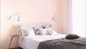 Coole Ideen Fürs Schlafzimmer 40 Das Beste Von Dekorative Pflanzen Fürs Wohnzimmer Elegant