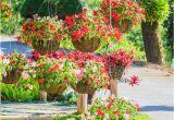 Düngerstreuer Für Den Garten Garten Deko Für Den sommer Selber Machen tolle Diy Tipps