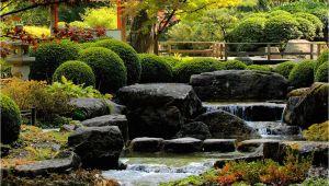 Feng Shui Garten Selber Gestalten Feng Shui Garten Selber Gestalten Anlegen Pflanzen