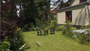 Feuerkörbe Im Garten Ferienwohnung Emma Märkisch Oderland Märkische Schweiz