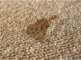Flecken Stoff sofa Entfernen Fettflecken Polster Hausmittel & Tipps
