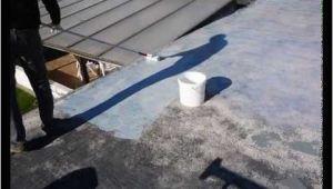Flüssigkunststoff Garage Garage Flachdach Selber Abdichten Mit Flüssigkunststoff