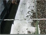 Garagendecke Abdichten Ein Weitverbreiteter Irrtum Durchfeuchtete Flachdächer Db
