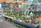 Garten Aufbewahrungsschrank Obi Obi Jettingen Unsere Gartenabteilung