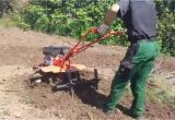 Garten Mit Maschine Umgraben Garten Umgraben Schnell Gemacht [zubr]