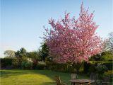 Gartenmoebel.de Bewertung Gartenmöbel