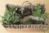 Geschenke Für Den Garten Selber Machen Die Raumfee Geldgeschenk Als Minigarten Verpackt