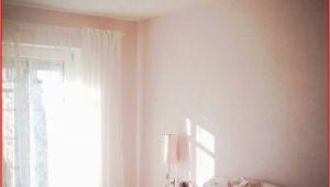 Graue Küche Grüne Wand O P Couch Günstig 3086 Aviacia