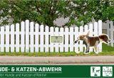 Hundeabwehr Im Garten Gardigo Hunde Katzen Abwehr