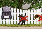 Hundeabwehr Im Garten Hunde Katzen Abwehr solar