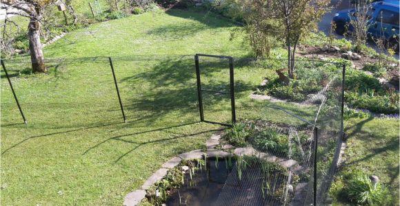 Katzenzaun Garten österreich Gartensicherung Mit Dem Katzenzaun System Vom Katzennetz