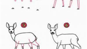 Küche Malen Kinder Die 72 Besten Bilder Von Wildschwein