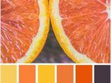 Küchen Farbe orange Die 1178 Besten Bilder Von Farbschemata
