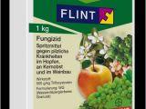 Küchenboden Stein Bayer Agrar Deutschland