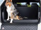 Latex Küchenfarbe Die 17 Besten Bilder Von Auto Und Hund