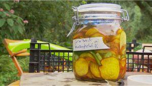 Mdr Garten Rezepte Plätzchen Haltbar Machen