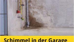 Schimmel In Garage Gesundheitsschädlich Feuchte Garage Mit Schimmel In Der Garage – Was Tun