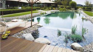 Schwimmingpool Garten Kosten Wie Viel Darf Ein Schwimmteich Kosten Diy Pooldesign