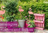 Sichtschutzrollo Für Garten Bastelanleitung Deko Flamingos Für Garten Und Balkon