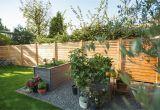 Sichtschutzrollo Für Garten Sichtschutz Für Den Garten Infos Und Ratgeber