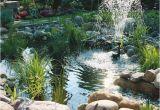 Springbrunnen Wasserspiele Für Den Garten Wasserspiele Im Garten Ideen Trends Modelle Mein
