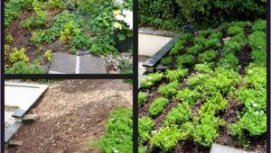 Steinmauer Im Garten Selber Machen Mauer Garten Bauen Neu 35 Genial Garten Ideen Selber Bauen