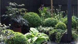 Verteilerdose Garten Bauhaus 25 Elegant Garten Steine Kaufen