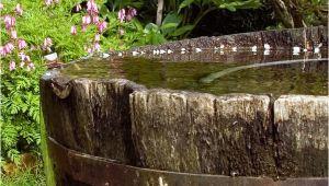 Wasserfass Im Garten Im Garten Altes Wasserfaß Foto & Bild