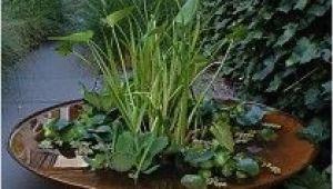 Wasserschale Garten Cortenstahl Cortenstahl Wasserschale Schoene Gefaesse
