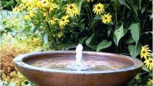 Wasserschale Garten Kunststoff Miniteich Auf Balkon Und Terrasse Schaner Wohnen Wasser