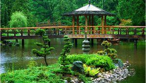 Zen Garten Wo Kaufen Der Zen Garten – Ruhe Und Ausgeglichenheit Das Line